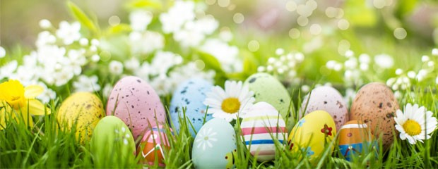 How to make the office more festive this Easter - Quills UK