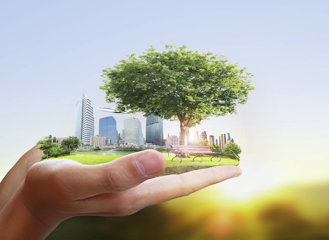 How to make your business more sustainable in 2020